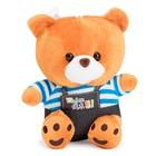 Мягкая игрушка «Медведь» в штанах и полосатой кофте, 20 см, МИКС