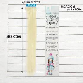 """Волосы - тресс для кукол """"Прямые"""" длина волос 40 см, ширина 50 см, №613А"""