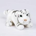 """Мягкая игрушка """"Тигрёнок"""", цвет белый, 18 см"""
