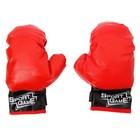 """Детские боксерские перчатки """"Ярость"""""""