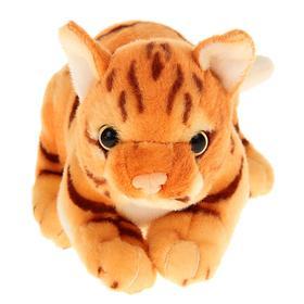 """Мягкая игрушка """"Котёнок Мур"""", 22 см"""