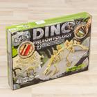 """Набор для проведения раскопок """"DINO PALEONTOLOGY"""" брахиозавр, стегозавр"""