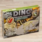 """Набор для проведения раскопок """"DINO PALEONTOLOGY"""" дилофозавр, диплодок"""