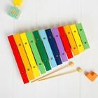 Музыкальная игрушка «Ксилофон», 12 тонов + 2 палочки
