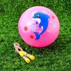 """Игровой набор: скакалка, мяч детский """"Дельфин"""", 22 см"""