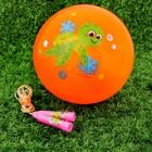 """Игровой набор: скакалка, мяч детский """"Черепашка"""", 22 см"""
