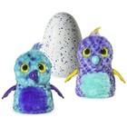 Интерактивная игрушка Hatchimals вылупляющийся из яйца