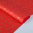 Бумага тутовая, HANJI, «Гинкго», золотые листья, 0,64 х 0,94 м, 30 г/м2