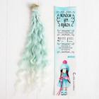 """Волосы - тресс для кукол """"Волны"""" длина волос 25 см, ширина 100 см, №LSA001"""