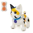 Робот интерактивный «Котёнок», радиоуправляемый, русский звуковой чип, цвета МИКС