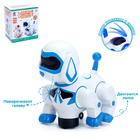 Игрушка-робот «Собака», работает от батареек, световые и звуковые эффекты, танцует, МИКС