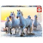 Пазл «Белые лошади на закате», 1000 деталей