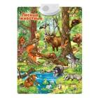 """Говорящий плакат  """"Лесные животные"""" звук, работает от батареек SL-02020, в пакете"""