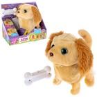 Интерактивный щенок «Арчи» со светящейся косточкой, 16 см