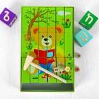 Игрушка развивающая «Башня + картинки» 4,5×26×16 см