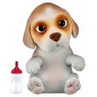 """Интерактивная игрушка OMG Pets! Cквиши-щенок """"Французский бульдог"""""""