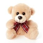 Мягкая игрушка «Медведь с бантом №2» 17 см, цвета МИКС