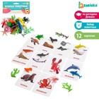 """Zabiaka Развивающий набор с карточками по методике Домана """"Водные животные"""""""