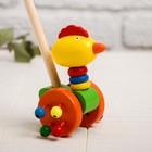 Детская каталка на палочке «Животные с бусинками на колёсах» 9×14×50, МИКС