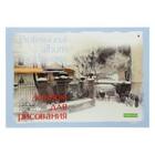 Альбом для рисования А4, 40 листов на склейке, в клетку, «Профессиональная серия», блок 150 г/м2, микс из 2-х видов