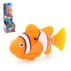 """Аквариумная рыбка """"Клоун"""", плавает в воде, работает от батареек МИКС"""