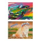 Альбом для рисования А4, 16 листов на скрепке, обложка картон 240 г/м2, блок офсет 80 г/м2, 2 вида, МИКС