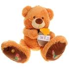 """Мягкая игрушка """"Медведь с мёдом"""", МИКС"""
