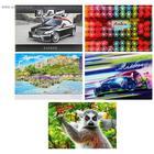Альбом для рисования А4, 20 листов на скрепке, обложка картон, 240 г/м2, блок офсет 80 г/м2, МИКС